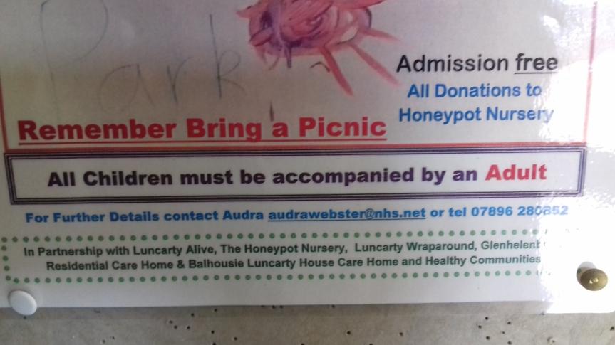 picnic in park2